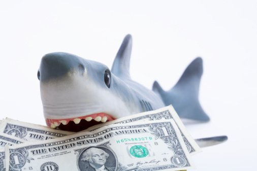 Image result for money sharks