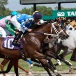 Gambling Industry Criticizes First Draft of Florida Pari-Mutuel Rules
