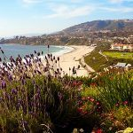 California Online Poker Could Be Reality by 2015, Experts Predict