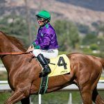 California Chrome Hopes to Claim Triple Crown
