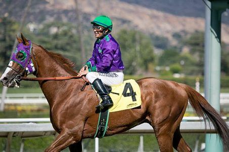 California Chrome Belmont Stakes Triple Crown