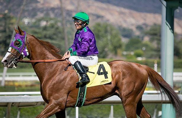 California Chrome Belmont Stakes Triple Crown