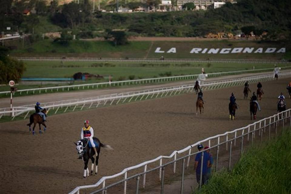 Venezuelan racehorse Rio Negro poisoned