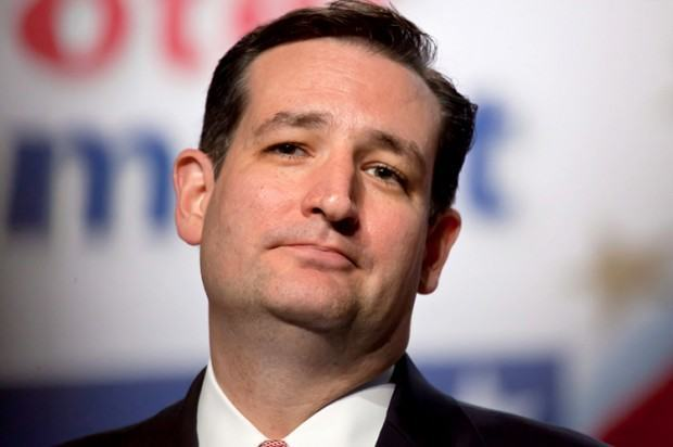 Ted Cruz 2016 GOP contender