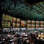 Nevada Senate Passes Sports Betting Bill for Businesses