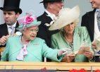 UK gambling industry takes 12.6 billion in record year