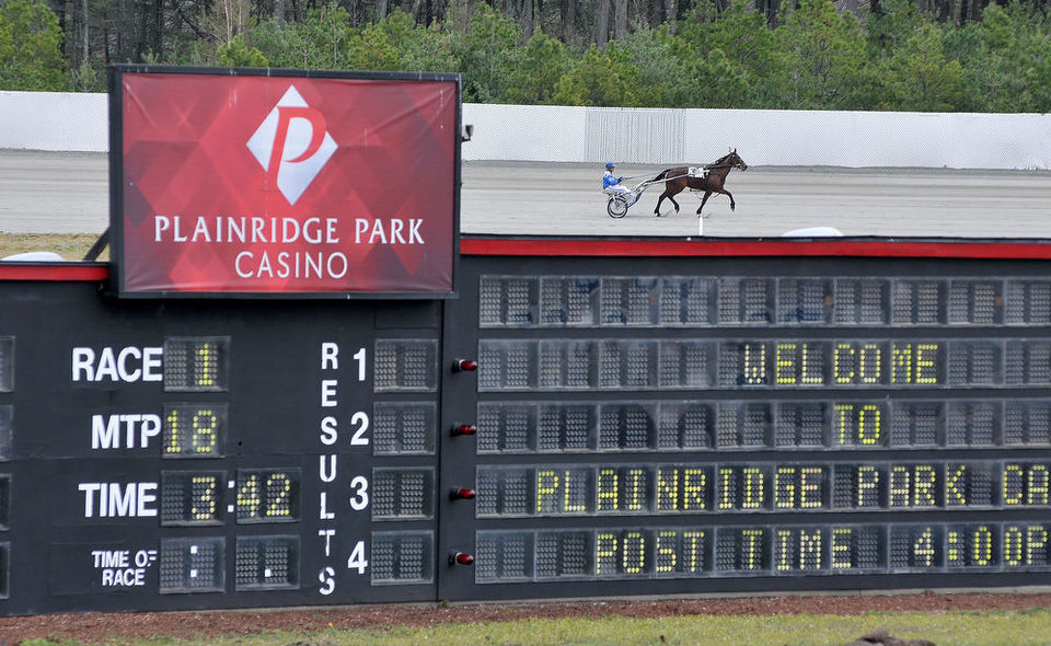 Plainridge Park Casino harness horse racing