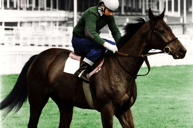 William Hill pays out on Red Rum Grand National bet