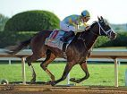Belmont Stakes preview