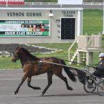 Vernon Downs racino track taxes
