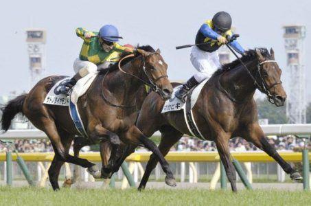 Japan horserace betting