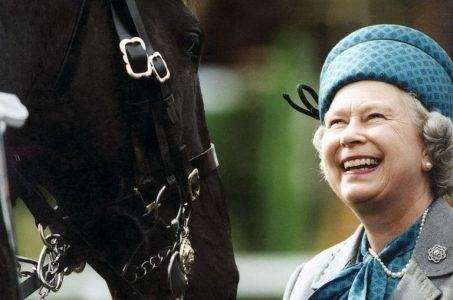 Queen Elizabeth, champion horse breeder