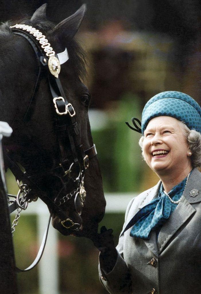 Queen Elizabeth, champion horse breeder
