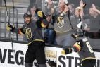 Vegas Golden Knights hockey odds