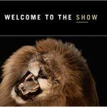 MGM Resorts Says 'The Show' Must Go On, Relaunches Suspended Marketing Campaign