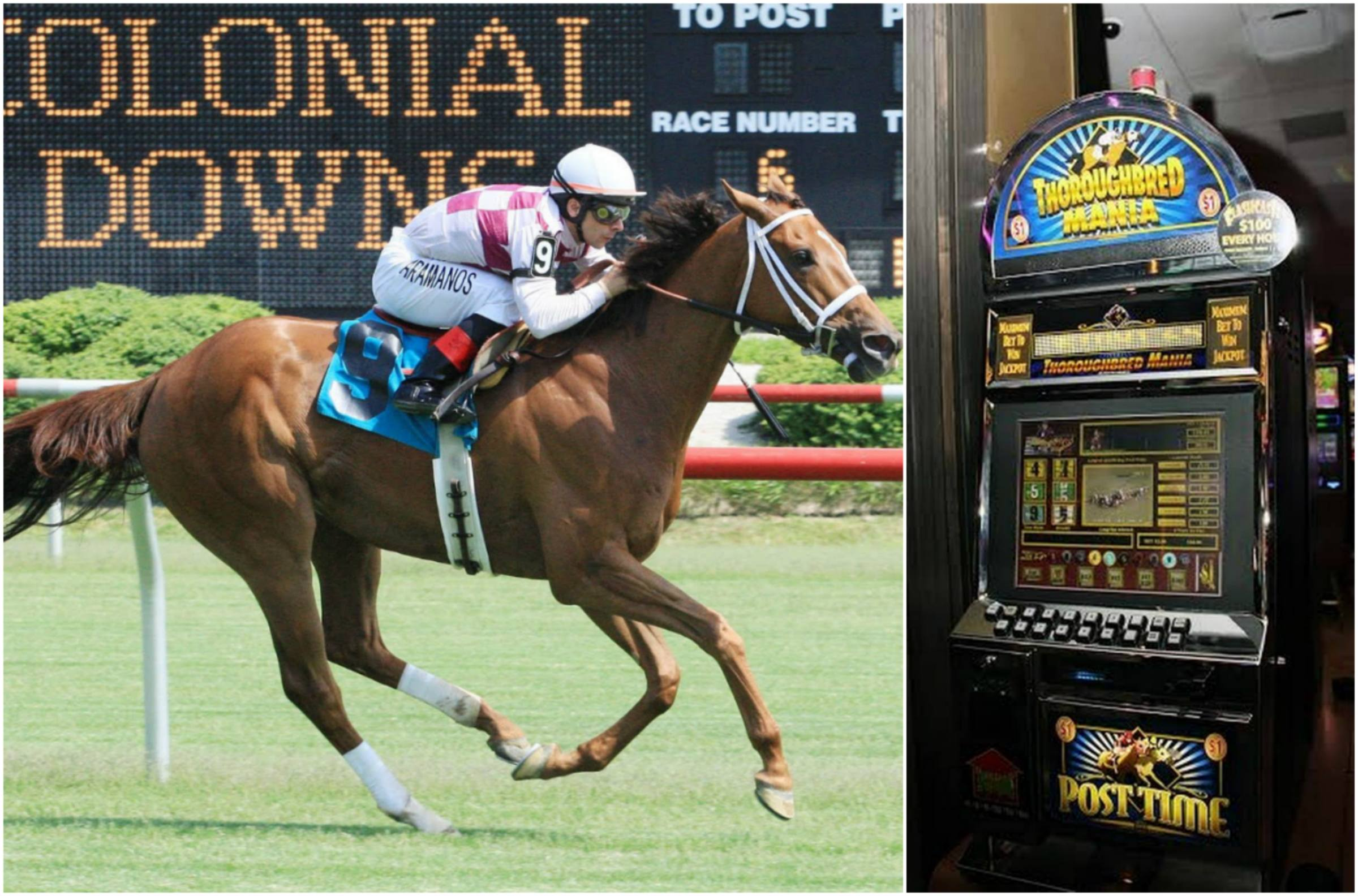 horse racing historical betting Virginia