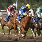 Save Idaho Horse Racing submits ballot signatures