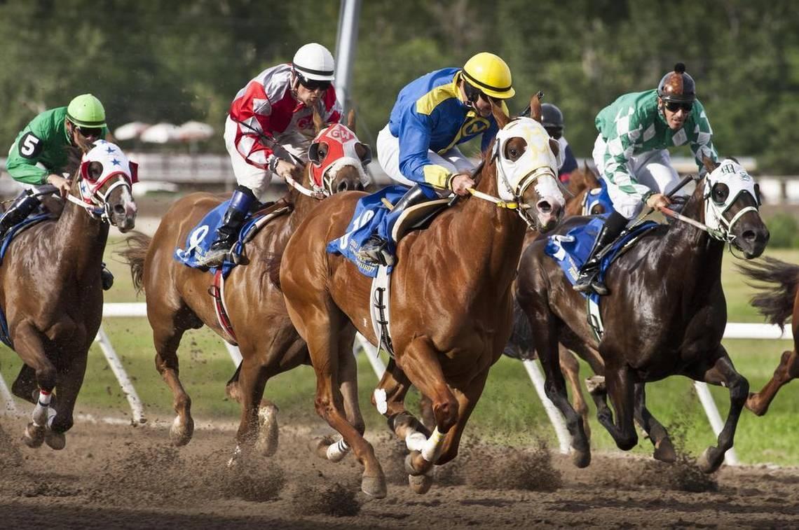 Save Idaho Horse Racing submits ballot signatures