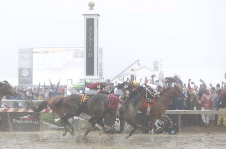Justify odds Triple Crown Belmont
