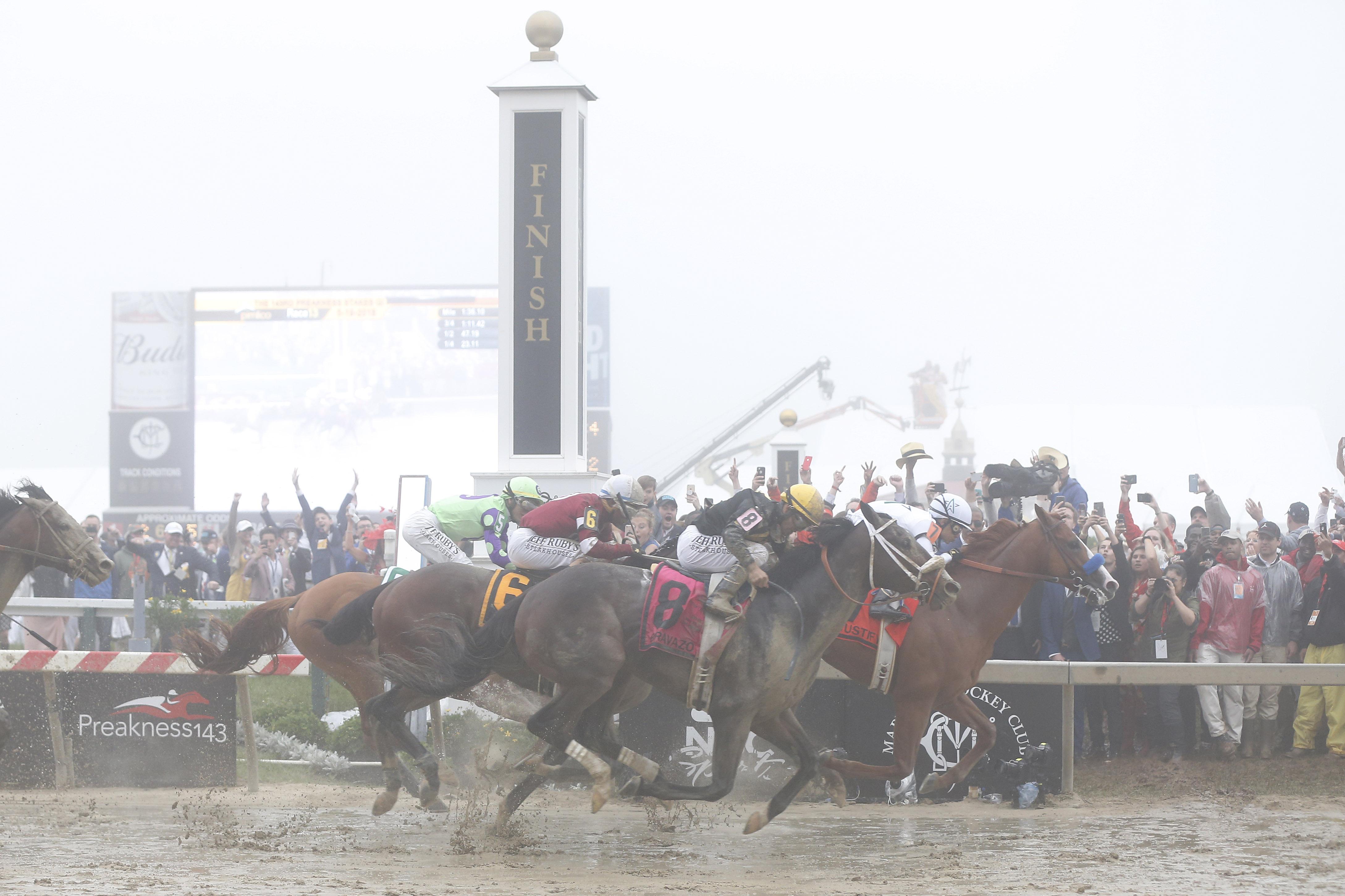 Justify odds Triple Crown Belmont
