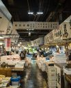 Integrated resort Tsukiji fish market