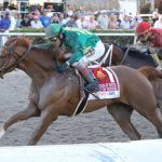 Road to Kentucky Derby: Code of Honor, Bourbon War Stand Out After Fountain of Youth Stakes