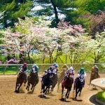 Live Horse Racing Lottery Game to Debut in Kentucky This Weekend