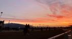 Santa Anita suspension horse racing