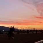 Santa Anita Suspends Racing After Fatality, Kentucky Derby Prep, Other Stakes Rescheduled