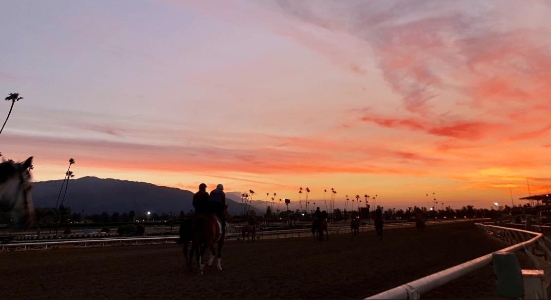 Santa Anita suspension horse racing