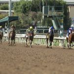 Congressmen Seek National Drug, Safety Standards for Horse Racing, While Some Worry Bettors May Foot Bill