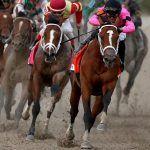 Kentucky Derby Spots Scored by Maximum Security, Plus Que Parfait, as Favorites Falter in Prep Races
