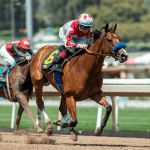 California Board Pushes Back Discussion of Santa Anita Racing Dates Amid 23 Horse Death Scandal