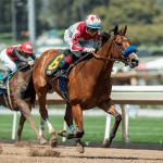 California Board Pushes Back Discussion of Santa Anita Racing Dates Amid 23 Horse Death Scandal