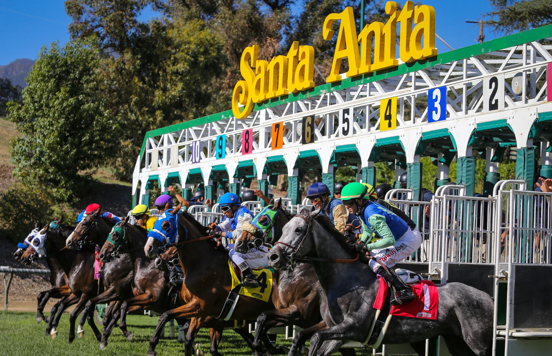 California Horse Racing Board To Mull Options To Move