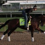 Entrapped Epiglottis Forces Favorite Omaha Beach Out of Kentucky Derby