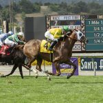 Sen. Feinstein, LA Times Call on Santa Anita to Stop Horse Racing After Another Equine Fatality