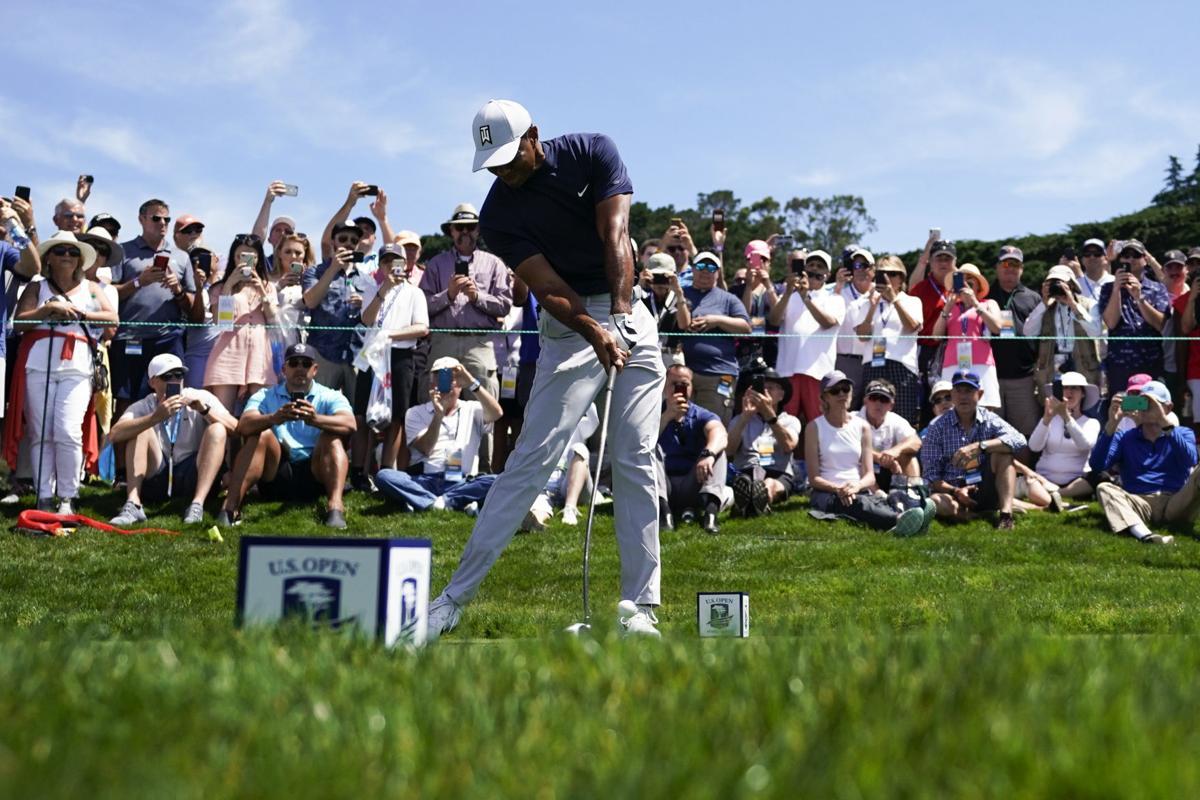 Dustin Johnson Tiger Woods US Open golf odds