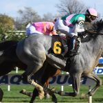 Oddsmakers Consider Tacitus, War of Will Prime Contenders for Saturday's Belmont Stakes