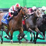 New York Racing Association's Turf Triple Series Starts Saturday with Strong Fields at Belmont Park