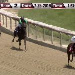 Jeopardy James the Horse Doesn't Match His Namesake, Finishes Second in Racing Debut