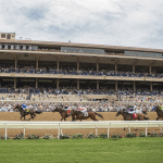 'Freak' Accident During Del Mar Training Session Results in Two Horse Deaths