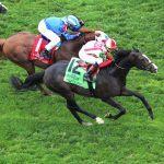Bricks and Mortar Gets the Spotlight Saturday as Arlington Million Favorite Seeks Sixth Straight Win