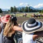 Vancouver Inspector Suspected in Changing Racetrack Worker Documents — Report