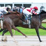 Omaha Beach Returns to Racing Saturday in Santa Anita Sprint Championship