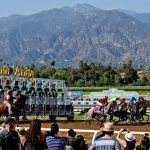 Two More Horses Die at Santa Anita as California Track Preps for Breeders Cup