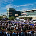 Breeders Cup at Santa Anita Posts Record Handle for Friday Races; Omaha Beach, Bricks and Mortar Among Saturday Favorites