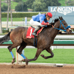 Breeders Cup Death Sparks Call to Suspend Horse Racing at Santa Anita, Ban Whip