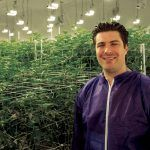Drug Wars: Las Vegas Casino Exec Turned Legal Marijuana Dealer Sues Competitor for Slander