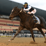Unbeaten Independence Hall Favorite in Kentucky Derby Preps Stakes Race at Tampa Bay Downs
